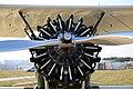 Boeing-Stearman N2S (B75N1) - Radial engine (9423903996).jpg
