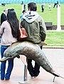 Bondi, 15 - Dolphin rides - Bondi, 2011.jpg