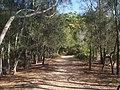 Bonnie Vale - panoramio (2).jpg