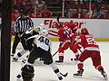Bonus Experimental 3x3 Overtime Period, Detroit Red Wings vs. Pittsburgh Penguins, Joe Louis Arena, Detroit, Michigan (21083019833).jpg