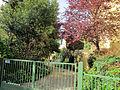 Borgo pinti 55, palazzina, giardino 06.JPG