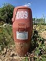 Borne Incendie 009 Route Bâgé St Cyr Menthon 3.jpg