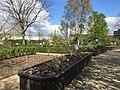 Botanische tuinen Utrecht 74.jpg