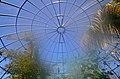Botanischer Garten der Universität Zürich nach Umbau - 'Tiefland' 2014-03-08 14-39-29.JPG