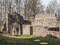 Bramberg Ruine vorburg P4RM2283.jpg