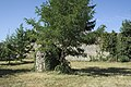 Brières-les-Scellés Bâtisse 366.jpg