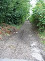 Bridleway from Pickelden Lane - geograph.org.uk - 571531.jpg