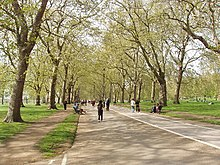 Broad Walk in Hyde Park, by Park Lane - geograph.org.uk - 788977.jpg