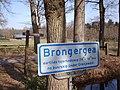 Brongerga w01.JPG