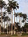 Bucaramanga - panoramio (3).jpg