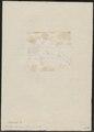 Buceros convexus - schedel - 1783-1811 - Print - Iconographia Zoologica - Special Collections University of Amsterdam - UBA01 IZ19300200.tif