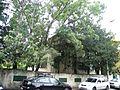 Bucuresti, Romania, Casa pe Str. Emil Pangratti nr. 15, sect. 1, (alta pozitie).JPG