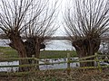 Burgess Field Nature Park view towards Port Meadow 4.jpg