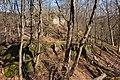 Burgruine-Hattstein-JR-E-3718-2020-04-02.jpg