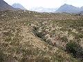 Burn just before it enters the Allt Srath Lungard - geograph.org.uk - 693485.jpg