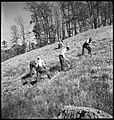 CH-NB - USA, Tennessee Valley-TN- Landarbeiter - Annemarie Schwarzenbach - SLA-Schwarzenbach-A-5-09-062.jpg
