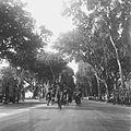 COLLECTIE TROPENMUSEUM Militaire parade in Makassar ter gelegenheid van Koninginnedag TMnr 10028471.jpg