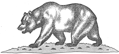 Official Rendering Of The Bear