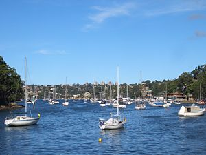 Cammeray - Willoughby Bay, Cammeray
