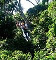 Canopy Tour El Salvador.JPG