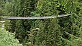 Capilano-Suspension-Bridge-9041e2.jpg