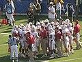 Cardinal in huddle at 2008 Big Game.JPG