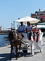 Carriage in Chania, Creta.jpg