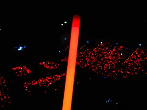 TVXQ - Red light stick used at TVXQ concerts