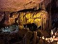 Castellana's caves wolf.jpg