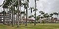 Cayenne place des palmistes 2013.jpg