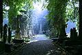 Cemetery (2894562483).jpg