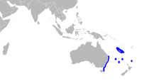 Range of dumb gulper shark (in blue)