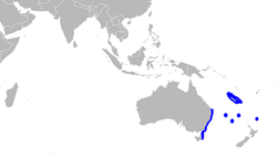 Centrophorus harrissoni distmap.png