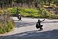 Cerro de la Estrella- longboarders on road.jpg