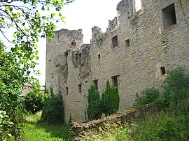 The ruins of the chateau in Louvigny