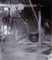 Chacobo; interiör av en hydda. hängande krukor. Gran Chaco. Bolivia - SMVK - 0072.0071.tif