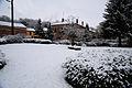 Cheppy sous la neige. Parc.JPG