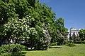 Cherkasy Oblrada public garden 02.JPG
