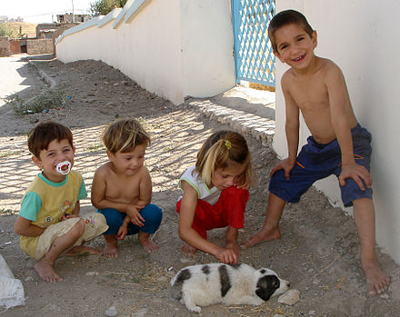 Kurdish children in Sulaymaniyah. Children puppy sulaimania.jpg