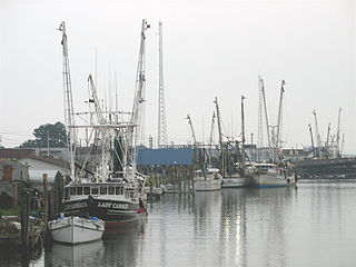 Chincoteague, Virginia Town in Virginia, United States
