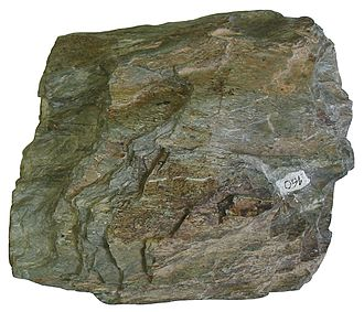 Greenschist - Chlorite schist, a type of greenschist.