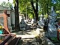 Cimitirul Bellu 31.jpg