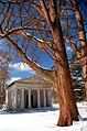 "Cincinnati - Spring Grove Cemetery & Arboretum ""Heavy Branches Over Fleischman's Mausoleum"" (4367251061).jpg"