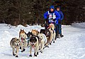 Cindy Gallea mushing near APU (4430278066).jpg