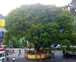 Hatton, Sri Lanka Town in Central Province, Sri Lanka