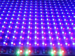Closeup of some light emitting diodes on a sign