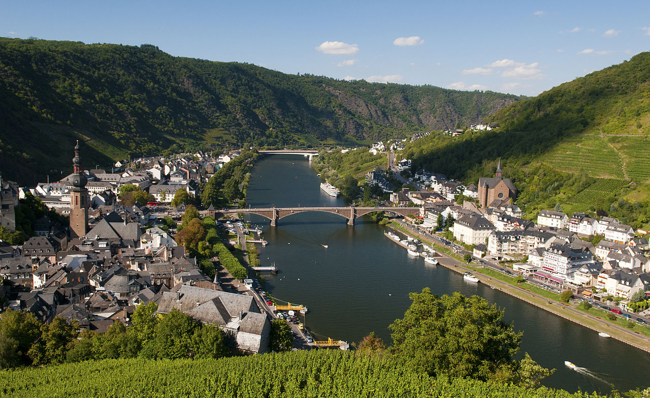Single party cochem