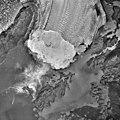 Columbia Glacier, Calving Terminus, Terentiev Lake, September 13, 1985 (GLACIERS 1368).jpg