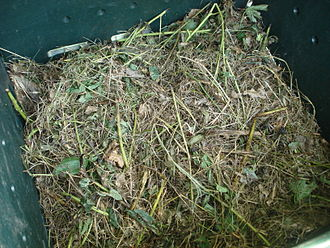 Compost - Materials in a compost pile