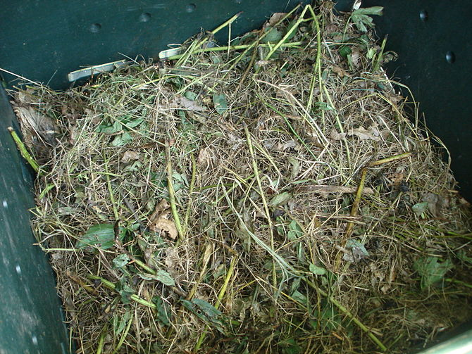 English: Materials in a compost bin.